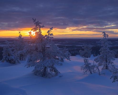 paysage enneigé en laponie finlandaise